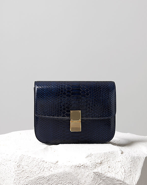 Céline Pre-Fall 2014 navy python box bag